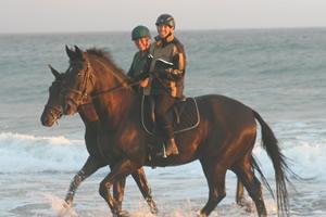 horse-holiday