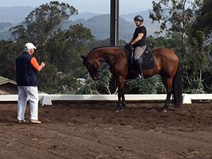 Horse training student