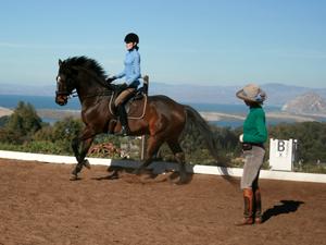 professional horseback ridingnlessons