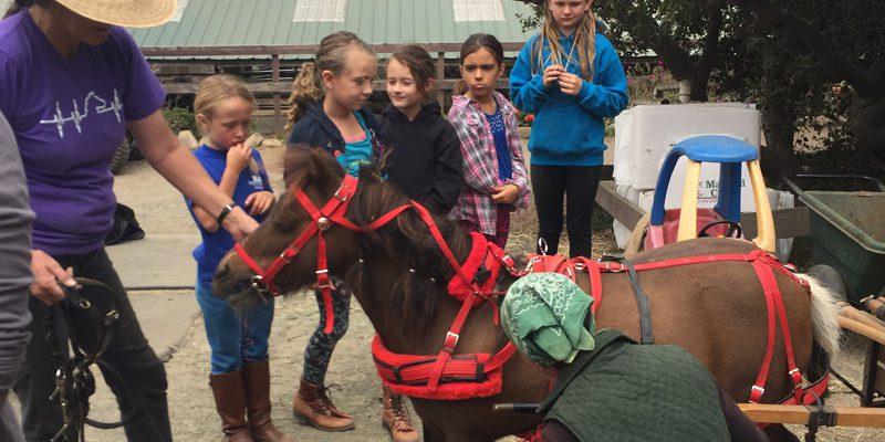 kids-horse-camp-2