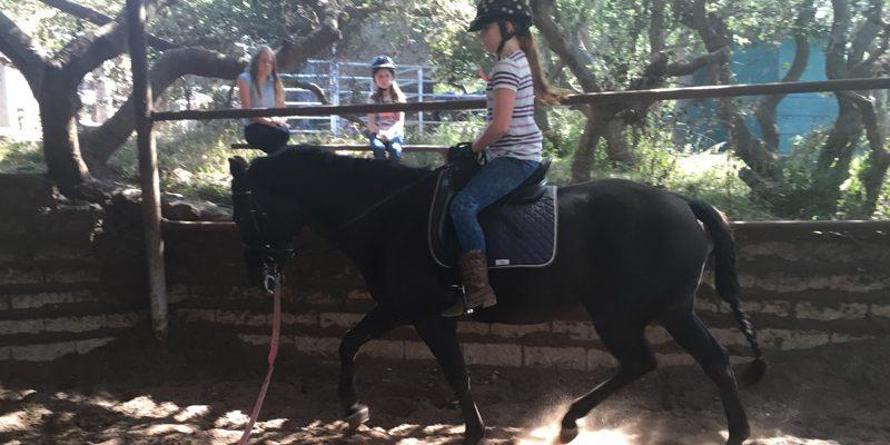 kids-horse-camp-3