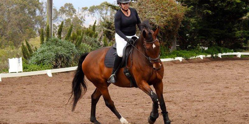 spring-equine-event-10
