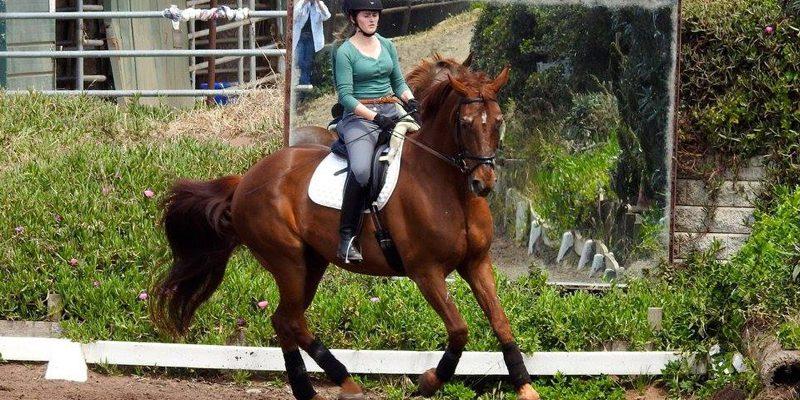 spring-equine-event-4