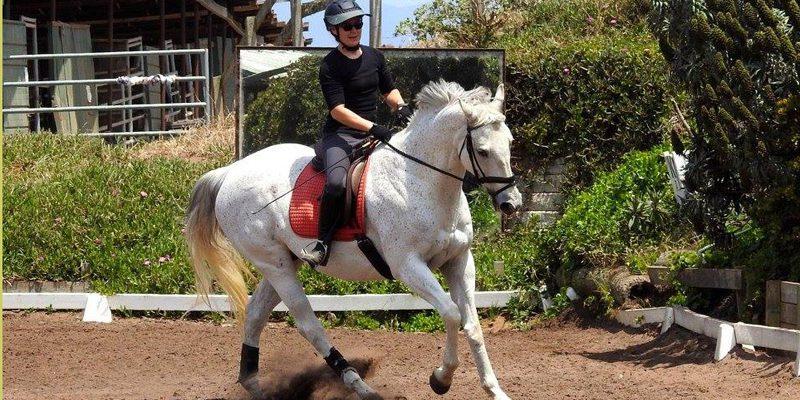 spring-equine-event-5