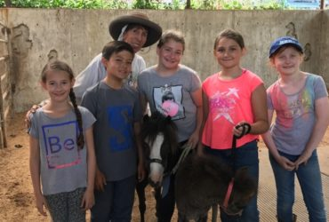 2017 Kids Horse Camp At Sea Horse Ranch