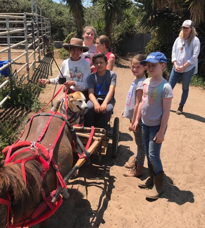 2017-kids-horse-camp-2