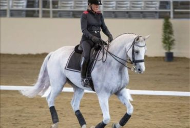 November 3-4 Dressage Clinic With Equestrian Olympian Hilda Gurney