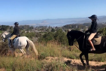 Horse Trail Riding On The Central Coast