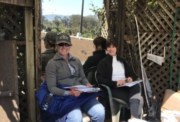Instructional Schooling Show At The Ranch